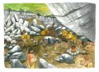 Ancient genomes link early farmers to Basques 2