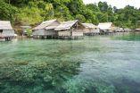 Climate impacts on marine biodiversity 2
