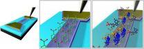 Graphene sensor tracks down cancer biomarkers