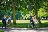 Pollution dispersion in cities improved by trees, research shows