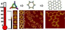 RNA shows potential as boiling-resistant anionic polymer material for nanoarchitectures