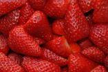 Strawberries lower cholesterol