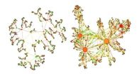 Understanding of complex networks could help unify gravity and quantum mechanics 2