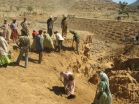 World loses trillions of dollars worth of natures benefits each year due to land degradation